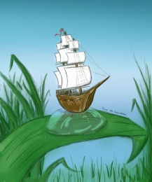 sail_the_7_leaves_focus